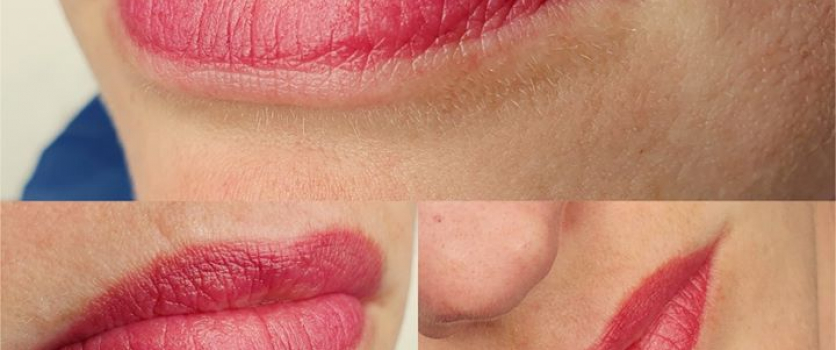PMU LIPS: Healed before touch-up at Doné's